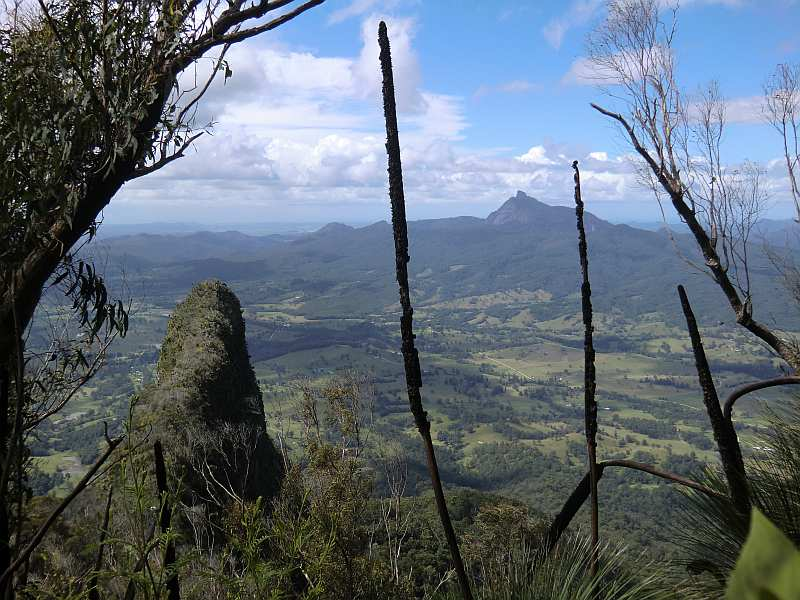 Border Range NP - View towards Pinnacle and Mount Warning